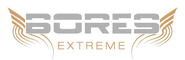 BORES_Logo_4C_print_1_transperent